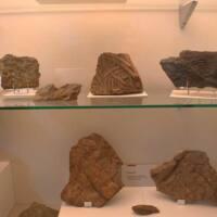 Centro de Interpretación del Fósil de Navatrasierra